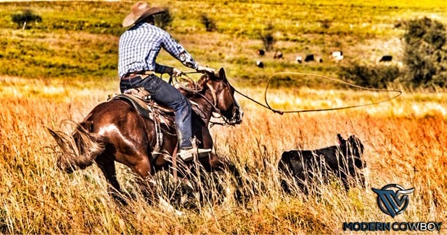 The Modern Cowboy Podcast with Dan Hillenbrand